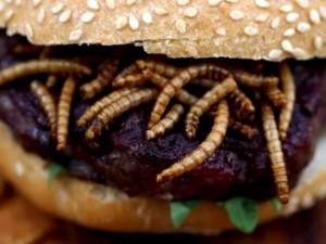 hamburger-con-insetti-e-vermi1